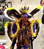 07d Rapid City SD - Black Hills Indian Pow Wow at the Rushmore Plaza Civic Center 45 (Johns Never Home) Tags: utah wyoming idaho montana southdakota yellowstone tetons badlands mountrushmore crazyhorse devilstower rapidcity powwow saltlakecity jacksonhole