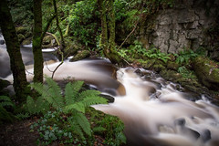 Ireland September 2016 (janeway1973) Tags: irland ireland irisch green beautiful county kerry torc waterfall wasserfall long exposure langzeitbelichtung mossy moosig