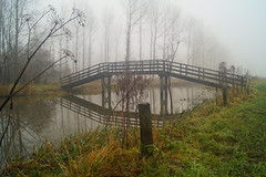 DSC06474 (omeharm) Tags: leeuwarder bos forest mist mistig misty boom bomen tree trees brug bridge