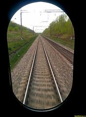 Ехали в последнем вагоне в поезде на Кисловодск. Пути убегали вдаль, а все живое зеленело..