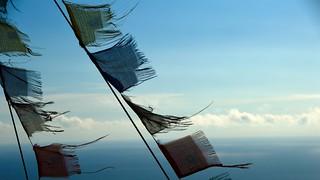 Caballitos de viento