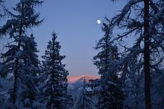 Sunset Moonrise (kabright68) Tags: sunset moonrise mountain trees snow reflection winter nature cherryville britishcolumbia bc
