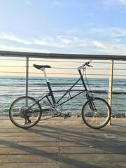 אופני טורינג (electricbicycleisrael) Tags: אופניים אופני סינגל ספיד אופנייםחשמלייםמתקפלים ebike ectlv zehus