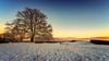 IMG_8041-Bearbeitet-Bearbeitet.jpg (MSPhotography-Art) Tags: morgen schnee dämmerung winter landscape landschaft alb snow