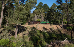 Landslide (Dobpics O'Brien) Tags: puffingbilly pbr puffing pbps pass billy belgrave locomotive landslide victorian victoria vr steam engine rail railway railways train 6a narrow na ng gauge