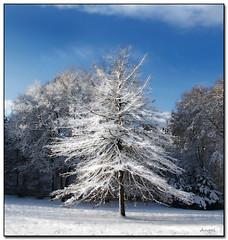 Winter Princess (angelofruhr) Tags: deutschland bochum ruhrgebiet best