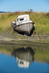 750_9806 (lgflickr1) Tags: boat abandoned refection water pond lagoon neglected weathered worn angle alaska homer