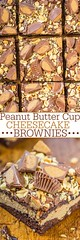 Peanut Butter Cup Ch (alaridesign) Tags: peanut butter cup cheesecake brownies
