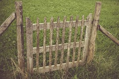 Just a simple fence (*mirt) Tags: nature brown green fences crazytuesday 7dwf wood fence