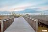 Bridge - Brug Onlanden Netherlands (Reina Smallenbroek) Tags: reinasmallenbroek brug bridge lee longexposure natuurbeheer onlanden drenthe sky