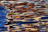 Lendemain de fête (tableaux.imaginaires) Tags: tableauimaginaire reflection reflet reflessi reflejos reflexion reflets water eau sea mer abstract abstrait fête couleurs colors circle cercles circles
