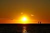 DSC00970 (ZANDVOORTfoto.nl) Tags: sunset sun gold sky silhouette zandvoort aan zee meeuw seagull seagulls meuwen noordzee sea coast