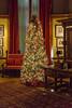 DSC03840.jpg (imfaral) Tags: biltmore christmas