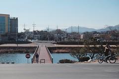 경주 북천 강변 (wls2420) Tags: 겨울 강 다리 자전거 경주 12월 맑음