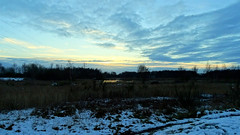 Sun setting over Jeffrey's swag by Norton Lakeside halt (eucharisto deo) Tags: winter canock chase heath railway chasewater country park staffordshire snow sky cloud sunset norton lakeside halt