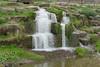 waterfall (Leo Reynolds) Tags: xleol30x leol30random panasonic lumix fz1000 fauna animal mammal waterfall water feature groupfz1000fanclub xgroupfz1000fanclubx