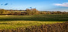 Cold but sunny Leicestershire landscape (Peter Leigh50) Tags: ews db cargo stone train empties hopper field farmland farming hedge trees river sence wistow shed sheep railway railroad sky landscape rural countryside cold december shadow shadows sunshine winter
