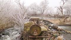 WINTER WONDERLAND ON THE RIVER (hans 1960) Tags: winter wonderland weis white fluss river wasser water trees bäume cold kalt frost wehr nature natur landschaft landscape outdoor