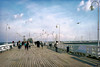 Sopot Pier, near Gdansk (mahazda) Tags: sopot pier wooden longest europe poland polish polski city resort lampstands marina sea beach seagulls town mahazda canon eos 80d