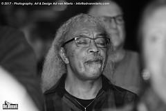 2017 Bosuil-Het publiek bij Joost de Lange en Band Of Friends 11-ZW
