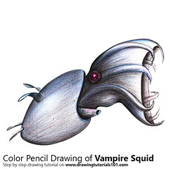 Vampire squid with Color Pencils [Time Lapse] (drawingtutorials101.com) Tags: vampire squid squids hell cephalopods animal animals sketch sketches sketching pencil color drawing drawings draw how timelapse video