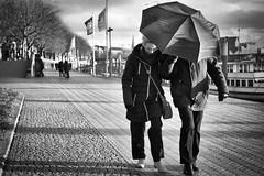 Abgeschirmt (Deinert-Photography) Tags: streetfotografie fujixt2 cityschlachte deutschland street schwarzweis bremen schwarzweiss deinert regenschirm blackwhite citylife hb hansestadt regenwetter streetart streetphoto streetphotography ubanphotography urban ombrello parapluie regenscherm schirm umbrelle