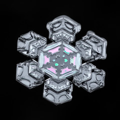 Snowflake-a-Day No. 22 (Don Komarechka) Tags: snowflake snow flake ice frost crystal winter frozen nature fractal physics thinfilminterference colour balance symmetry