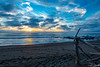 Driftwood Sunset II (dennisjohnston17) Tags: driftwood pacificocean cambria california waves orange blue