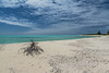 Oeno beach (M McM) Tags: island coral atoll sea water seashore clouds sand landscape canoneos760d remote isolated uninhabited oenoisland pitcairnislands pacificocean blue turquoise