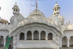 0F1A3107 (Liaqat Ali Vance) Tags: masjid chah jhandi mozang architecture architectural heritage google liaqat ali vance photography abdulah baloch lahore punjab pakistan