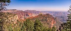 Vista Enchantada (www78) Tags: arizona grandcanyon nationalpark northrim grand canyon national park north rim vista enchantada