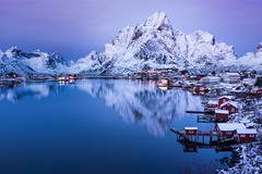 Reine Reflection (inkasinclair) Tags: reine lofoten reflection twighlight robuer water mountains snow winter norway