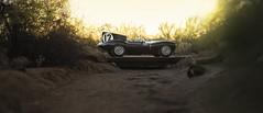 1954 Jaguar D-Type Works (Desert-Motors Automotive Photography) Tags: rmauctions rm rmsotheby s rmarizona arizona jaguar xkd xkd403 dtype stirlingmoss