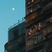MACAU STREETS DERRY AINSWORTH-6818