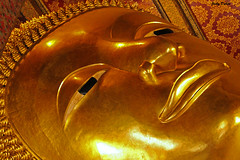 'However many holy words you read, however many you speak…. (Jinky Dabon) Tags: buddhism goldenbuddha bangkok watphothailand thaimassage temple religion buddhist buddha canoneos1200d