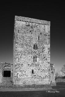 Kells Priory Ruins 2 B&W
