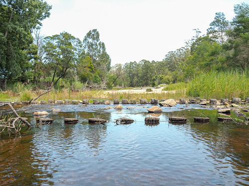 """Cann River • <a style=""""font-size:0.8em;"""" href=""""http://www.flickr.com/photos/160671654@N04/38768261234/"""" target=""""_blank"""">View on Flickr</a>"""