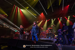 Gov't Mule and Ann Wilson - 2017 Xmas Jam (Asheville, NC) (David Simchock Photography) Tags: annwilson asheville christmasjam davidsimchock davidsimchockphotography frontrowfocus go4dindasproductinos govtmuleandannwilson habitatforhumanity hardheadmanagement nikon northcarolina uscellularcenter uscc warrenhaynes warrenhayneschristmasjam xmasjam avl avlent avlmusic band benefit concert event festival fundraiser image livemusic music musician performance photo photography usa