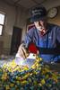 Candy-Making Apprenticeship (vfhwebdev) Tags: apprentice master apprenticeship vafolklife folklife craft food candy hardcandy handmade sugar foodways foodway chesapeake tidewater williamscandycompany hewilliamscandycompany va usa