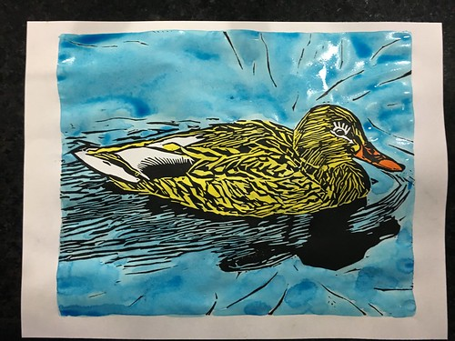 "Watercolor linocut experimenting tonight, 1st try. Curious to see how it dries #Watercolor #painting #handcolored #handprinted #handpulled #painting #print #prints #printmaking #blockprint #duck #mallard #lino #linocut #linoleum #linoprint #mixedmedia • <a style=""font-size:0.8em;"" href=""http://www.flickr.com/photos/57802765@N07/38774003324/"" target=""_blank"">View on Flickr</a>"