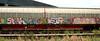 graffiti on freighttrains (wojofoto) Tags: amsterdam graffiti trein train cargotrain vrachttrein freighttraingraffiti freighttrain freights fr8 wojofoto wolfgangjosten sarah