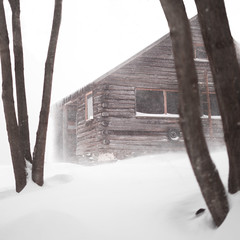 Shelter (andrew.clark471) Tags: sony vermont cabin pink snow winter windy storm trees wilderness forest ice white 50mm f18 alpha a7