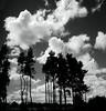 Wild Balmashanner Sky (ronramstew) Tags: forfar angus scotland balmashanner hill bummie clouds