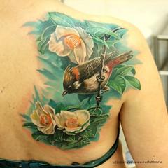 Художественная татуировка - птица и цветы (Evolution tattoo studio) Tags: tattoos татумосква татуировки татуюзао татусалон татуцветы colortattoo татуировкизао татусалонмосква bird татувреализме tattoostudio сделатьтату цветныетату татуировка tattoo татуировкиновыечеремушки татумастервадим татустудия татуптицы художественныетатуировки flowers тату