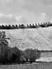 Roero patrimonio dell Unesco (matteo gramaglia) Tags: roero patrimoniounesco colline vigne viti piemonte provinciadicuneo bn bw nikon
