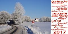 Merry Christmas (Steenjep) Tags: jul christmas xmas greeting hilsen
