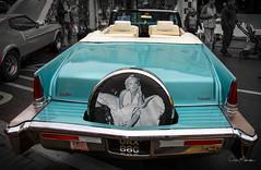 "ICONS (clive_metcalfe) Tags: ""samshaw"" cadillac motor car automobile marilynmonroe vintage usa sandown isleofwight carshow"