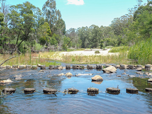 """Cann River • <a style=""""font-size:0.8em;"""" href=""""http://www.flickr.com/photos/160671654@N04/39373634772/"""" target=""""_blank"""">View on Flickr</a>"""