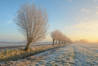 Once Upon a Winters Morning