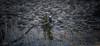 American Badass (wandering indian) Tags: sunrise sunset clouds cloudsstormssunsetssunrises sierras easternsierras california landscape nature beacheslandscapes nikon nikond810 kedardatta longexposure river owensriver owensvalley mammothlakes bayarea bishop monolake tufa